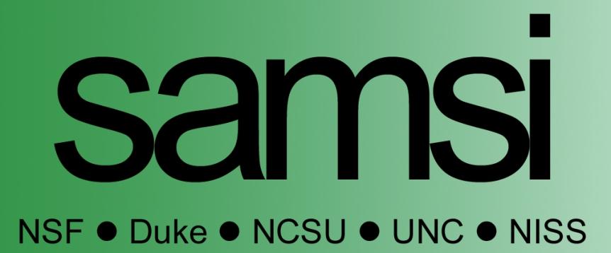 SAMSI Undergraduate Workshop